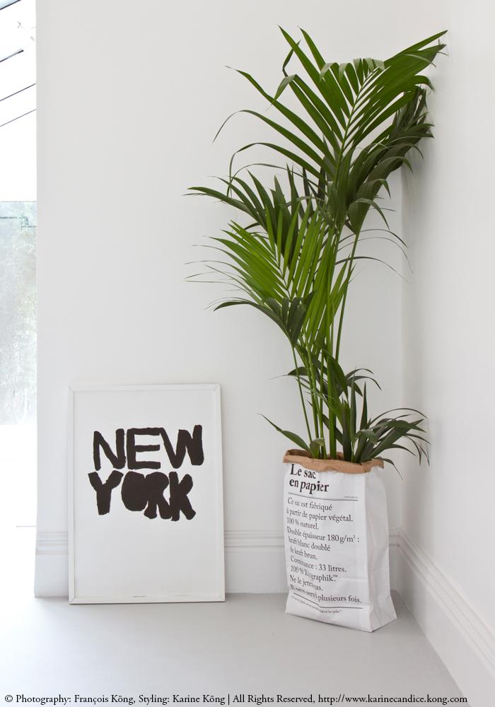 sac en papier, affiche New-York, plantes vertes, typographie