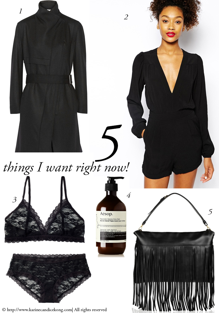 5 THINGS I WNAT RIGHT NOW! 09/01/2015