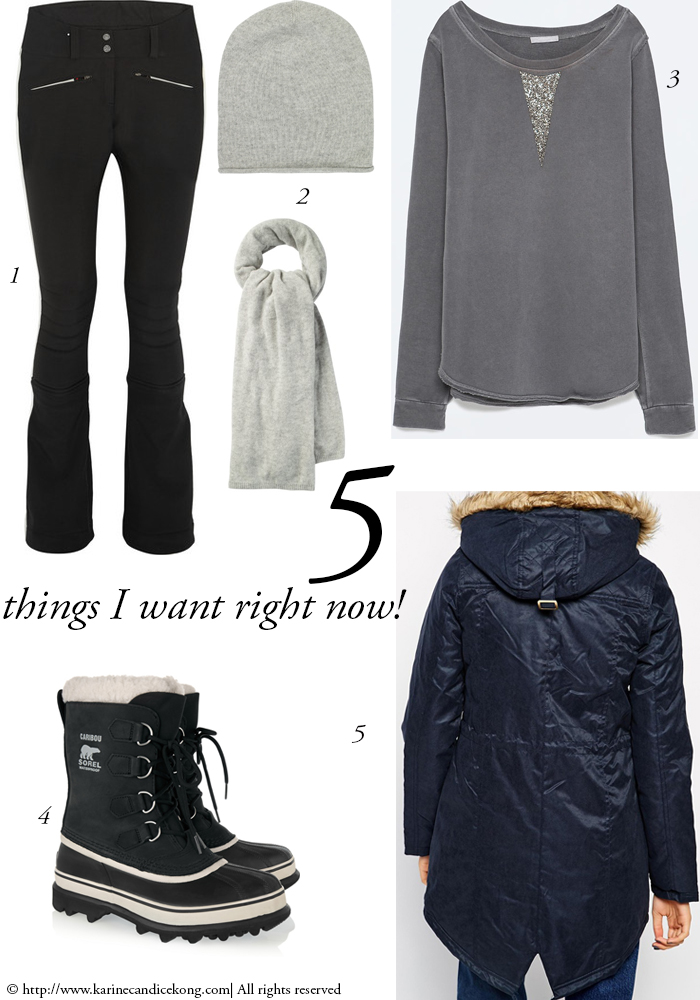 5 THINGS I WANT RIGHT NOW! 20/02/2015