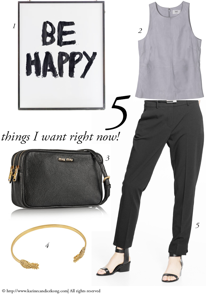 5 THINGS I WANT RIGHT NOW! 20/03/2015