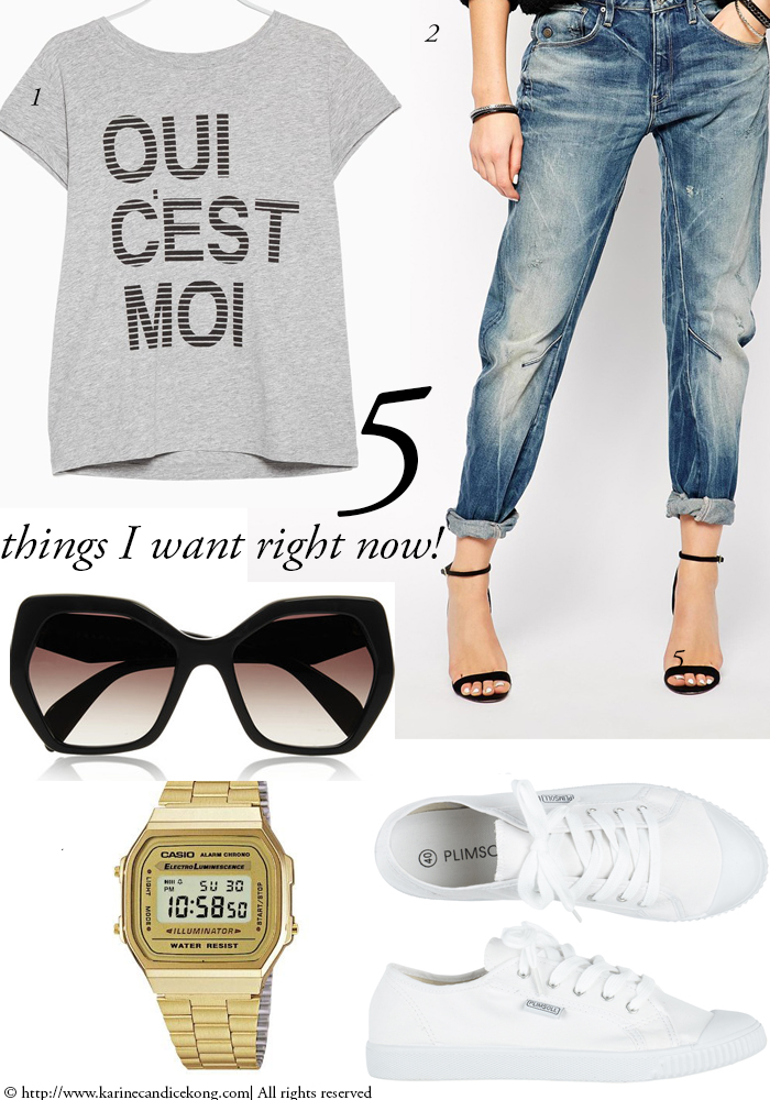 5 THINGS I WANT RIGHT NOW! 17/04/2015 www.karinecandicekong.com