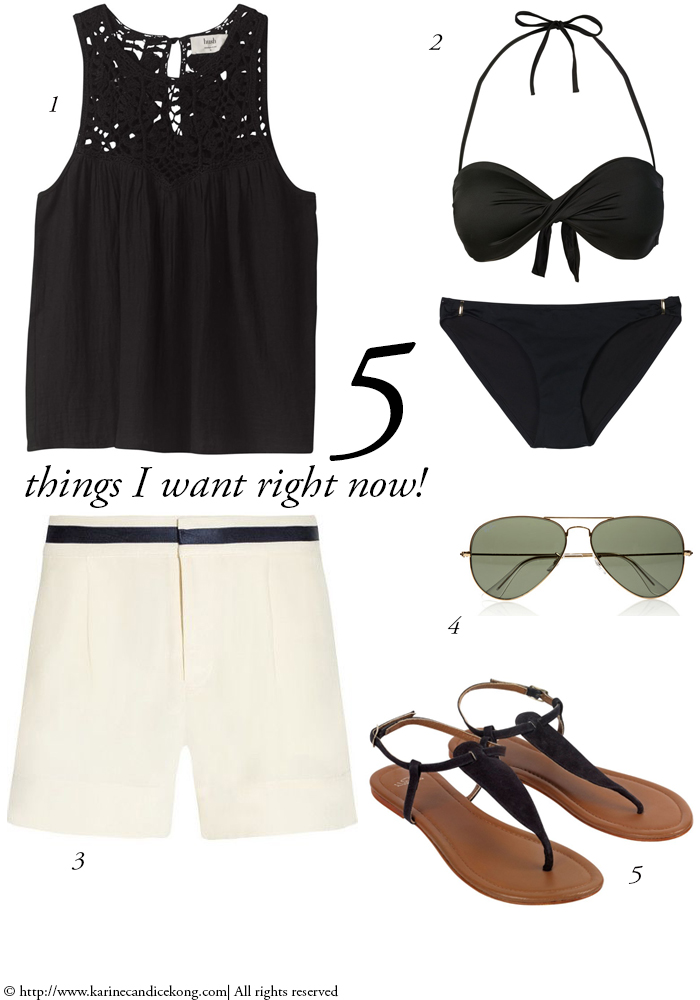 5 THINGS I WANT RIGHT NOW! 31/07/2015 Read on www.karinecandicekong.com