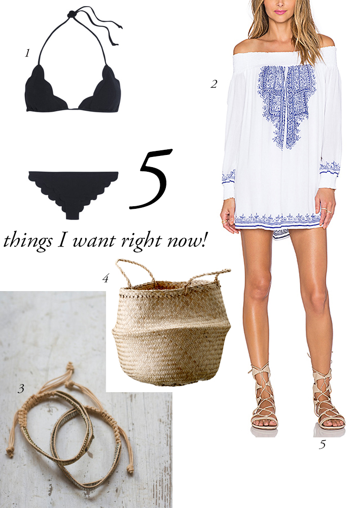 5 THINGS I WANT RIGHT NOW! 07/08/2015 Read on www.karinecandicekong.com