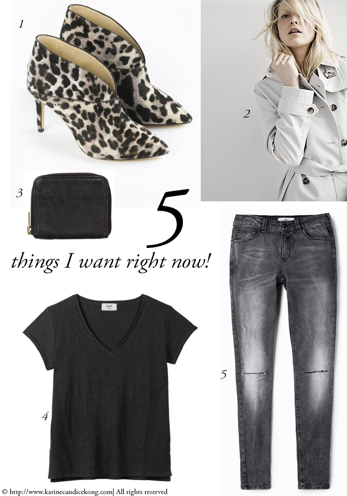 5 Things I want right now! 25/09/2015. Read on www.karinecandicekong.com