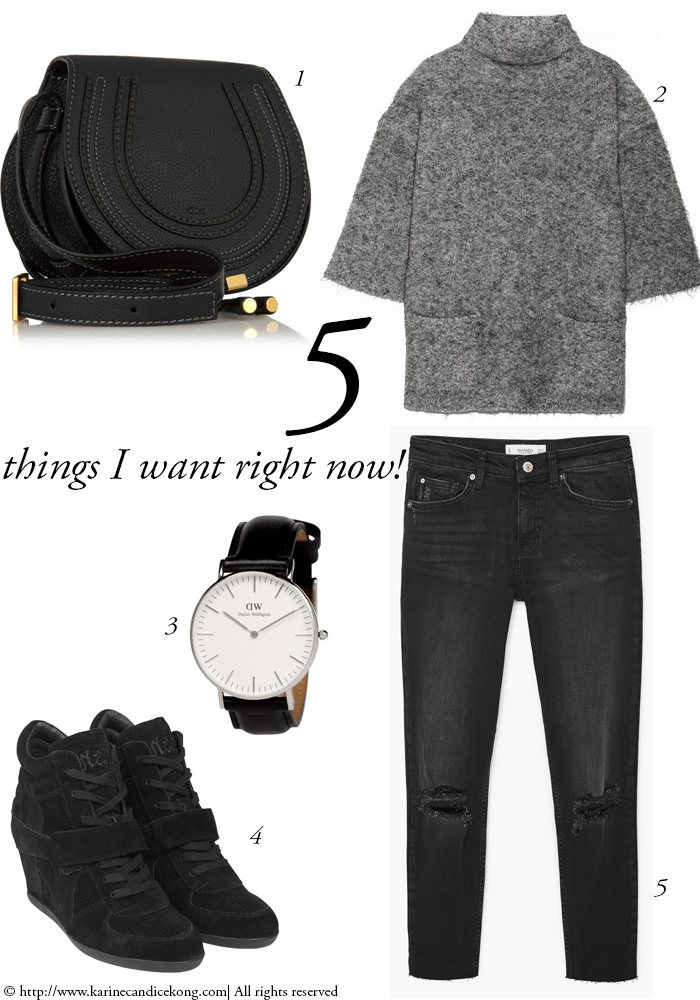 5 THINGS YOU WANT RIGHT NOW! to face up the cold winter looking foxy and stylish. Read on www.karinecandicekong.com