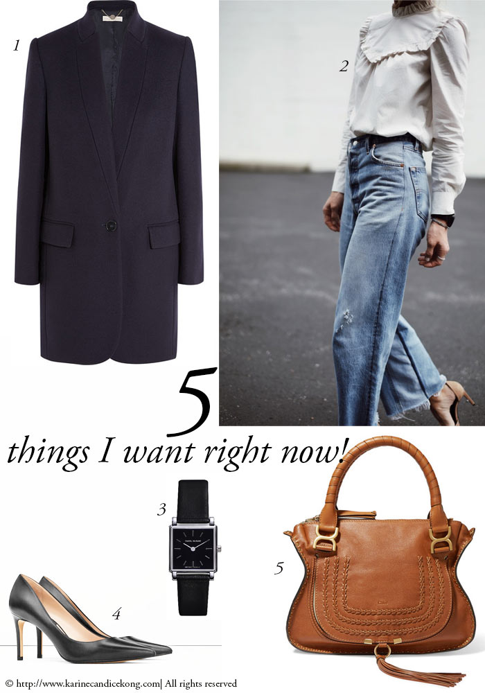 5 Things I want right now! this Popeline blouse & Chloé bag