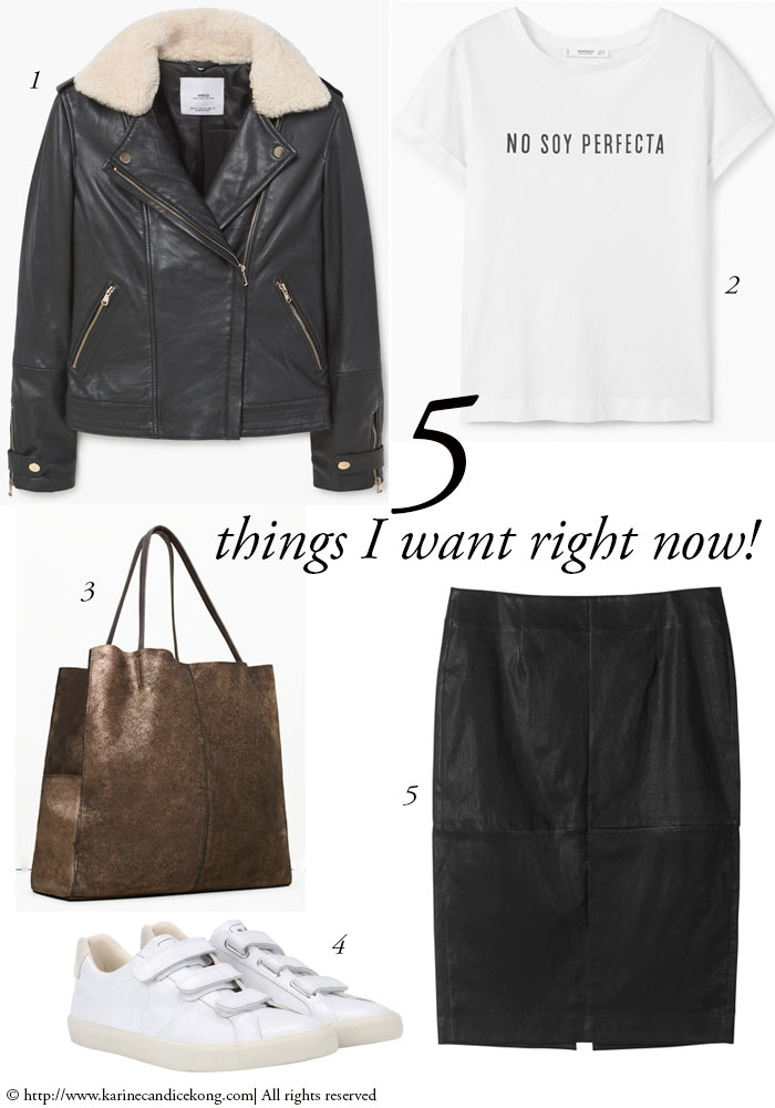 5 Things I want right now: leather skirt & shearling-lined jacket