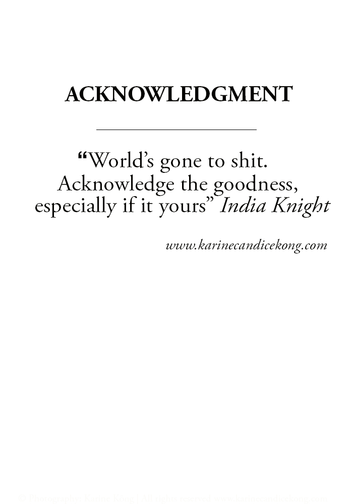 "World's gone to shit. Acknowledge the goodness, especially if it yours"" India Knight via www.karinecandicekong.com"